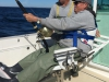 _Bob on the fish