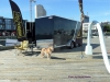 Chappy trailer guard dog_cred