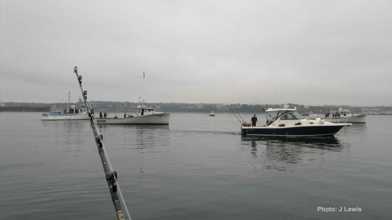 Boats milling for the 8 am start