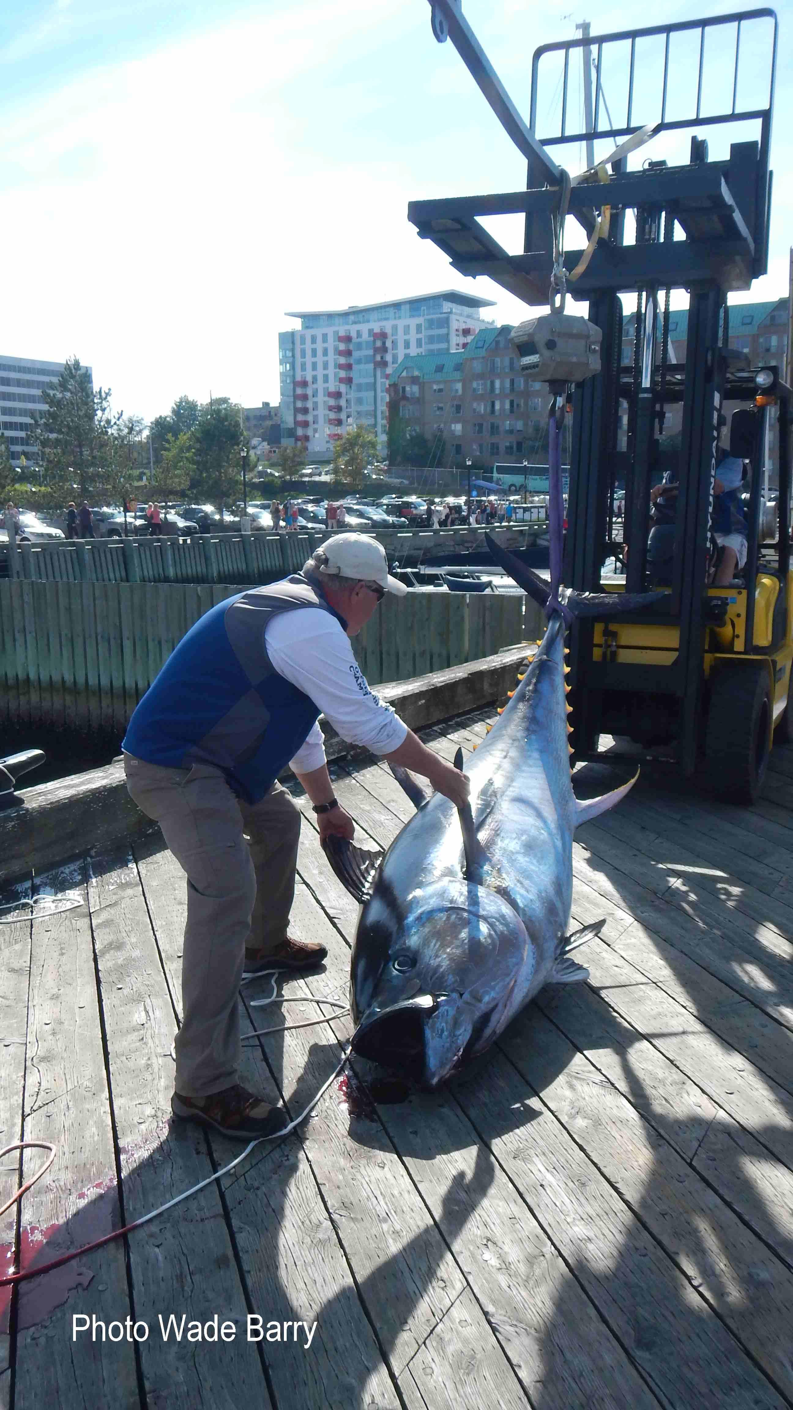 Reel Rookies fish on dock