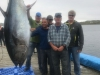 Team edge 1st fish 549 lbs