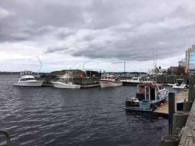 Registration-Boats