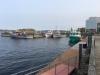 Cape-Breton-contingent-IMG_1410