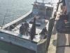 Shorty-LRU-unloading-Oceanview
